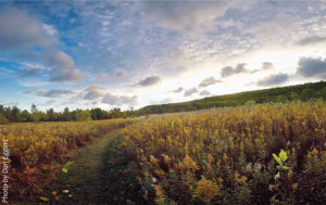 Bay-Shore-Blufflands-Nature-Preserve