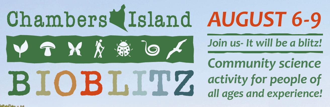 bioblitz-web-banner