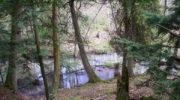 Heins Creek