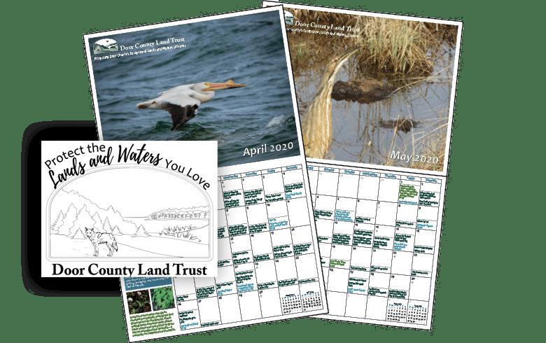 calendar & coloring page!