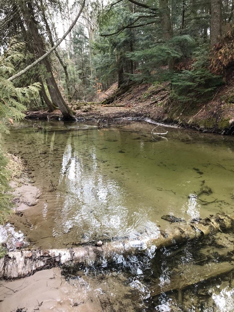 Heins-Creek-by-Cinnamon-Rossman-web
