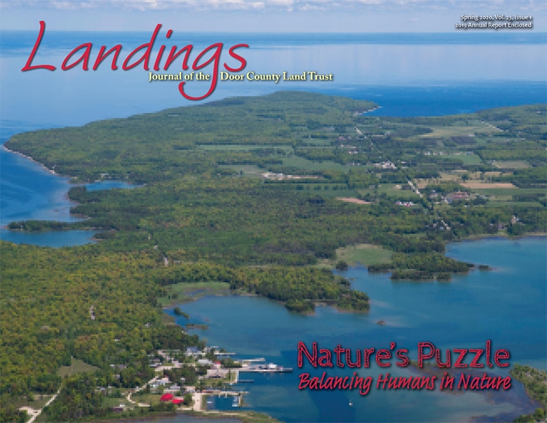 2020-Landings--Front-Cover-web