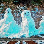10_26am 01.07.2021 TSNP snow creatures _03192  2.jpg