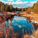 10_50am 01.07.2021 TSNP up pond _03275  2.jpg