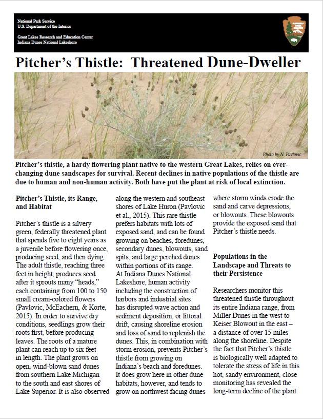 pitchers-thistle-NPS