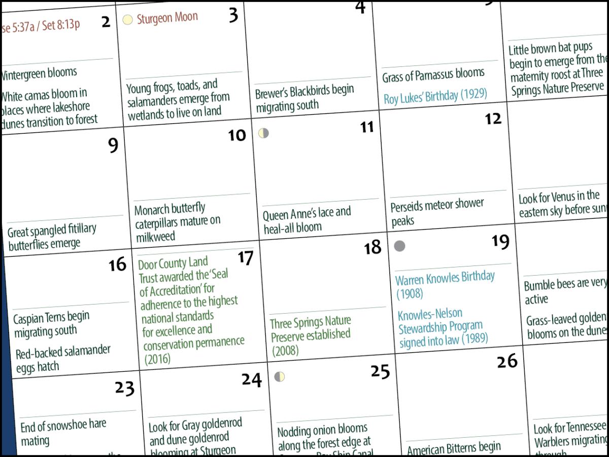 Calendar-closeup
