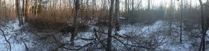 Door-County-Land-Trust--Ship-Canal-Restoration-1-by-J-Wilke