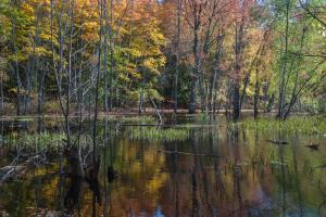 Ephraim Preserve at Anderson Pond