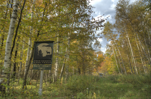 Richter Community Forest Nature Preserve